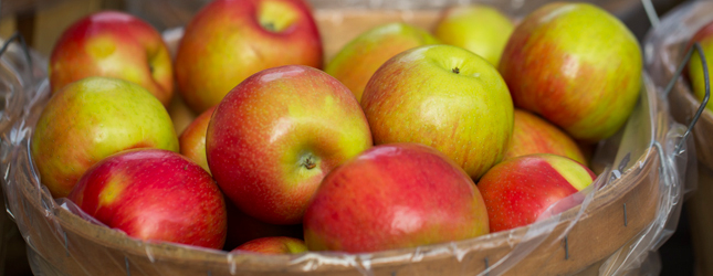 Honeycrisp Michigan Apples